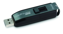 USB flash 256 GB Kingston Technology DataTraveler 300
