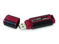250 GB USB flash Kingston DataTraveler 310